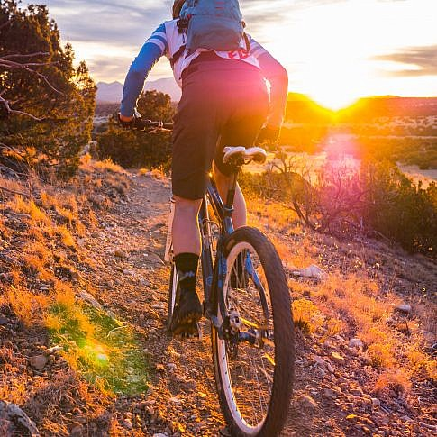 Mountain Biker riding into the sun